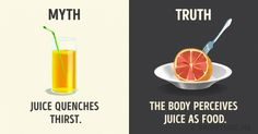 12myths about popular drinks it's time weforgot