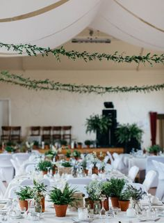 Pronovias for a pretty barn wedding in yorkshire pinterest 8 grnskande dekorationer till bde fest och brllop natural decoratingeucalyptus weddinggreen junglespirit Image collections