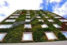 Hotel Gaia - Bogota': il giardino verticale con 2500 piante