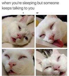 """The """"Just Woke Up"""" talk:"""
