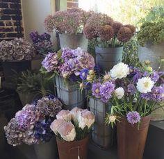 Blumengeschäft, Accessoires, Blumenladen, Fleurop Lieferservice | Garten    Garden | Pinterest