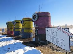Minions return to Beatrice; add new friend Nebraskans will love
