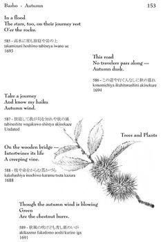 I love these - wonderful mashaAllah Haiku by Basho