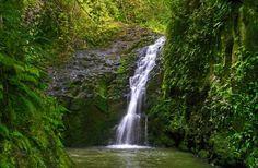 Maunawili Falls, Oahu