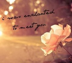 """Enchanted"" by Taylor Swift. I can't even describe how much I love this song. <3"
