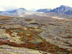 Fjellhytta interiør- og hytteblogg Vacation Memories, Mountains, Nature, Travel, Naturaleza, Viajes, Destinations, Traveling, Trips