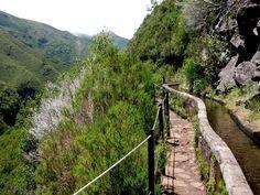 Levadas Madeira