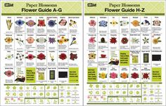 Paper Blossoms A-Z Flower Guide