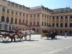 Schönbrunn Palace - Viena