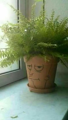 Ha! Sideshow Bob potplant