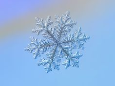 Real snowflake - Hyperion by Alexey Kljatov on 500px // Alexey has made a specialty of photographing snowflakes.