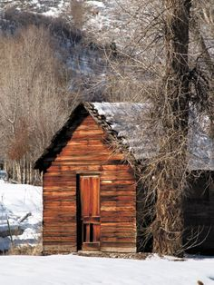 photo of a nice tiny cabin