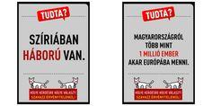 Cani in politica, in Ungheria quello a due teste del Mkkp punta alle elezioni. Una risata per seppellire il pregiudizio :http://www.qualazampa.news/2016/10/05/cani-in-politica-in-ungheria-quello-a-due-teste-del-mkkp-punta-alle-elezioni-una-risata-per-seppellire-il-pregiudizio/