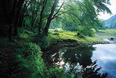 ภาพถ่ายสถานที่ทางประวัติศาสตร์ของศาสนจักร: แม่น้ำซัสเควฮันนา