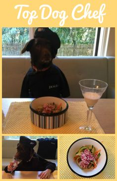 There's a new celebrity chef on the scene and he's got a paw up on the competition. In a short video, DOGUE Top Dog Chef Diesel prepares a simple but delicious meat & veg meal.