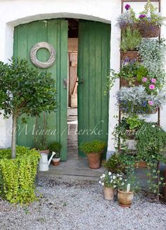 Organic Gardening Supplies Needed For Newbies Decorate A Doorway .Old Ladder And Hanging Plants. Outdoor Spaces, Outdoor Living, Outdoor Decor, Dream Garden, Home And Garden, My Secret Garden, Plantation, Garden Gates, Hanging Plants