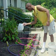 TEACCH using plastic hoops to indicate which plants require watering, during vocational gardening task.