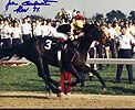 Seattle Slew, Triple Crown winner in 1977, photo signed by Jean Cruguet, offered by SAF.