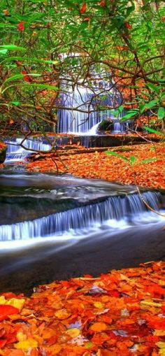 Grogan Creek Falls, North Carolina in Fall #BeautifulNature #Waterfalls #Autumn