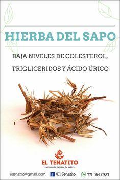 Hierba del sapo #medicinasnaturales