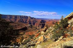 Writer in the Wild: Grand Canyon: Royal Arch Loop - South Bass to Roya...