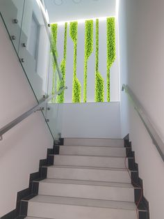 Picture from moss, reindeer scratching, Scandinavian moss Picture from mos Design Entrée, Lobby Design, Vertical Garden Wall, Vertical Gardens, Home Stairs Design, Staircase Wall Decor, Plafond Design, Design Your Dream House, Corporate Interiors
