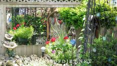 These garden mirror ideas show ways to display mirrors outdoors in home gardens. Also includes safety tips, ways to weather proof mirrors, and answers to frequently asked questions. Plant Design, Garden Design, Small Courtyard Gardens, Courtyard Ideas, Garden Mirrors, Diy Garden Projects, Garden Ideas, Fence Art, Garden Features