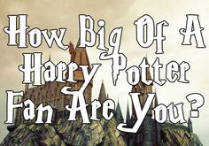 How Big Of A Harry Potter Fan Are You? I got Half-Blood because I have no money and I'm on the younger side so I couldn't go to see all the movies in theatre.
