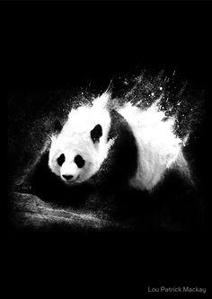 Milky Panda by Lou Patrick Mackay