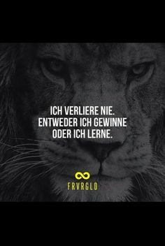 So sehn Sieger aus - Photo Lion Quotes, Words Quotes, Sayings, Motivational Quotes, Inspirational Quotes, German Quotes, True Words, Cool Words, Inspire Me
