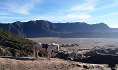Beauty in Desolation.  Several eruptions have transformed portions of the Bromo Caldera into a dessert-like landscape called The Sea of Sand.  Read more at rainbowjournal.com  #bromo #volcano #indonesia #indonesia_photography #travel #travelgram #instatravel Hotel Reservations, Volcano, Good People, The Good Place, Rainbow, Dessert, Sea, Adventure, Landscape