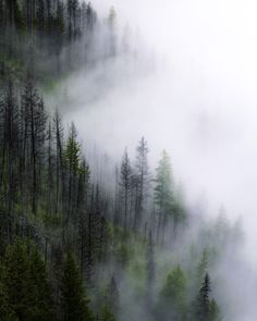Fog creeping up Christie Canyon. Kelowna B.C Canada [OC][34564320] #reddit