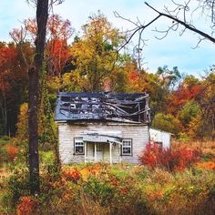 chrysti's photo on Instagram - I'm obsessed with this #abandonedhome in Northern Virginia