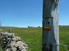 [Aveyron] Itinérance dans l'Aubrac : Etape 1 Voici les traces d'une itinérance effectuée en VTT BUL (Bivouac Ultra Léger) en ce mois de mai 2017 dans l'Aubrac. C'est une boucle qui part de Laguiole (Aveyron). Elle fait la part grande au GRP du Tour des Monts de l'Aubrac, et au GR 65, le Chemin de Compostelle.  Au départ, je devais faire le GRP en entier plus une boucle au coeur du plateau (200 km) en 4 jours mais le très mauvais temps annoncé pour la dernière étape m'a fait changer…