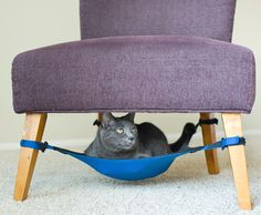 A cat crib. | 25 Ingenious Products That Will Save You So Much Space