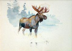 Moose | Carl Rungius | Artwork | National Museum of Wildlife Art