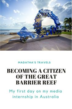 If you haven't heard of Citizens of the Great Barrier Reef, click here to read my blog post and find out how you can sign up to become a Citizen and help protect the world's oceans!  #australia #queensland #cairns #thegreatbarrierreef #citizensgbr #environment #conservation #marineconservation #marinebiology #ecofriendly #recycle #volunteering