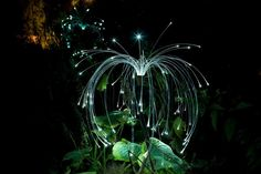 Fireflies by Bruce Munro
