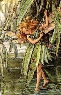 Cicely Mary Barker: The Willow Fairy