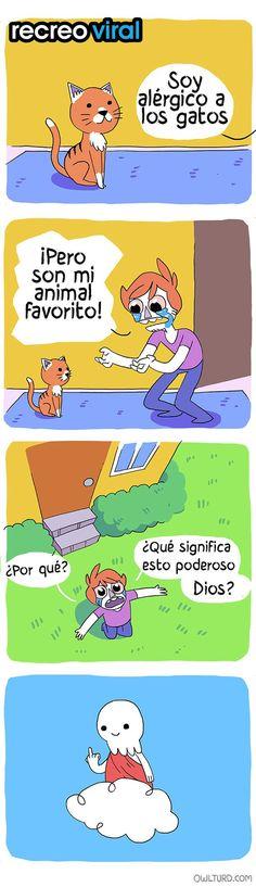 comic alérgico a los gatos