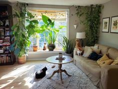Houseplant Care The Ultimate Guide to Happy & Healthy Indoor Plants - Healthy Plants Window Plants, Hanging Plants, House Plants Decor, Plant Decor, Bay Window Living Room, Garden Windows, Bay Windows, Pothos Plant, House Plant Care