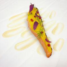 Salmon &Fruits(orange,Apple and pear purée)