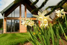 Easter weekend at Craigatin House & Courtyard Pitlochry