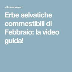 Erbe selvatiche commestibili di Febbraio: la video guida!