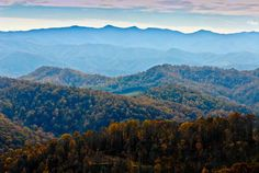 Blue ridge mountains  Shenandoah River  life is old there  older than the trees  younger than the mountains  blowing like the breeze..........