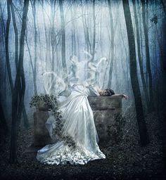 Surreal Photo Manipulations by Liliana Sanches Davis   Photo Vide