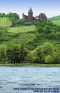 Castles and vineyards as seen from the Rhine River, Germany