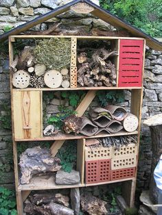 an insect hotel...for the birds??? or for the parasitic and insectivorous insects that protect our garden