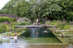 Water World A Natural Swimming Pool, Lily Pads Included is part of garden Pool Natural - Near NewarkonTrent, Nottinghamshire in the United Kingdom is a natural swimming pool that looks like an idyllic pond and has an aquatic garden to keep th Swimming Pool Pond, Natural Swimming Ponds, Natural Pond, Swimming Pool Designs, Swimming Nature, Ideas De Piscina, Garden Design Ideas On A Budget, Pool Landscape Design, Dream Pools