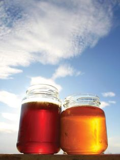 Famous as a sweet treat, the nutrition and health benefits of honey are added incentive to consume this bee staple.